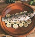 cuisinedumaroc-loup_a_la_coriandre