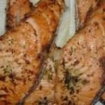 Salamon – saumon frit à la marocaine