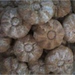 Ghriba aux cacahuètes nouvelle