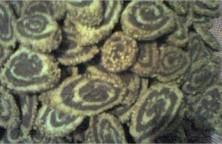 sables-enroules